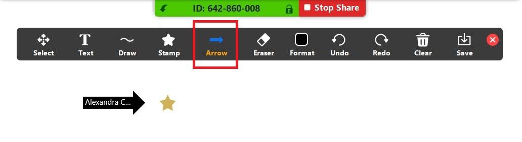Zoom screenshot showing whiteboard arrow