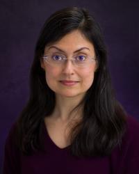 Professor Purnima Dhavan